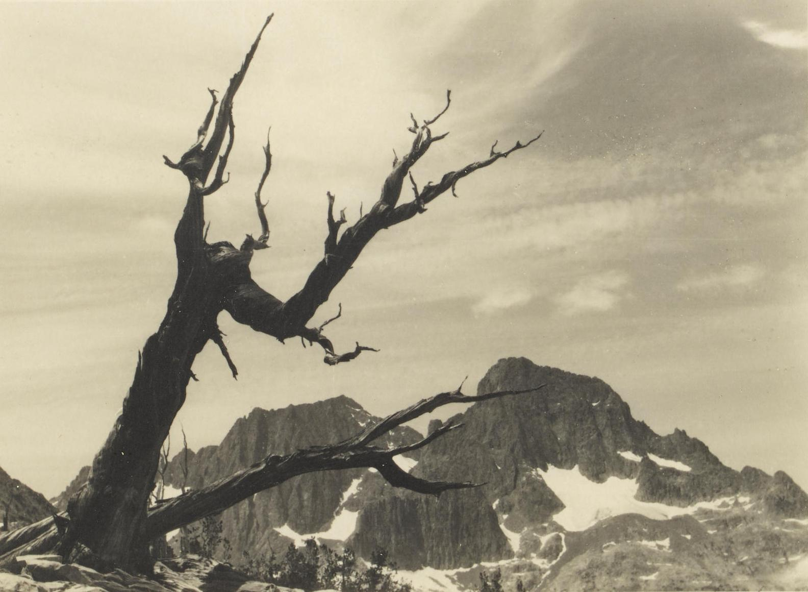 Ansel Adams-Selected Images Of The High Sierra-1927