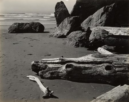 Edward Weston-Moonstone Beach-1937