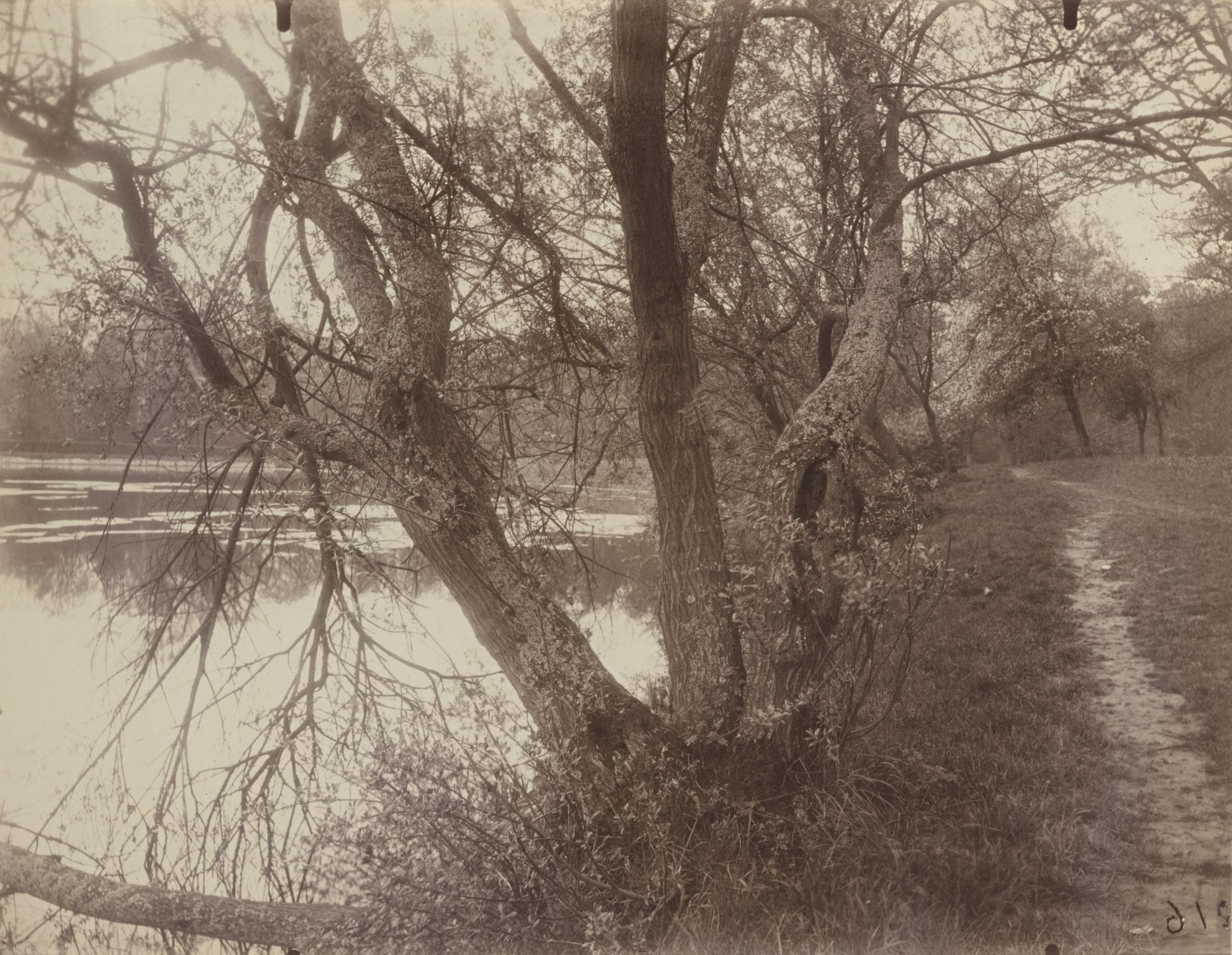 Eugene Atget-Etang - Ville Davray-1923