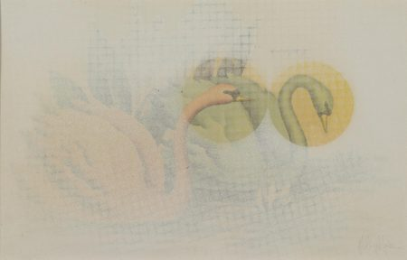 Robert Mapplethorpe-Untitled (Swans)-1971