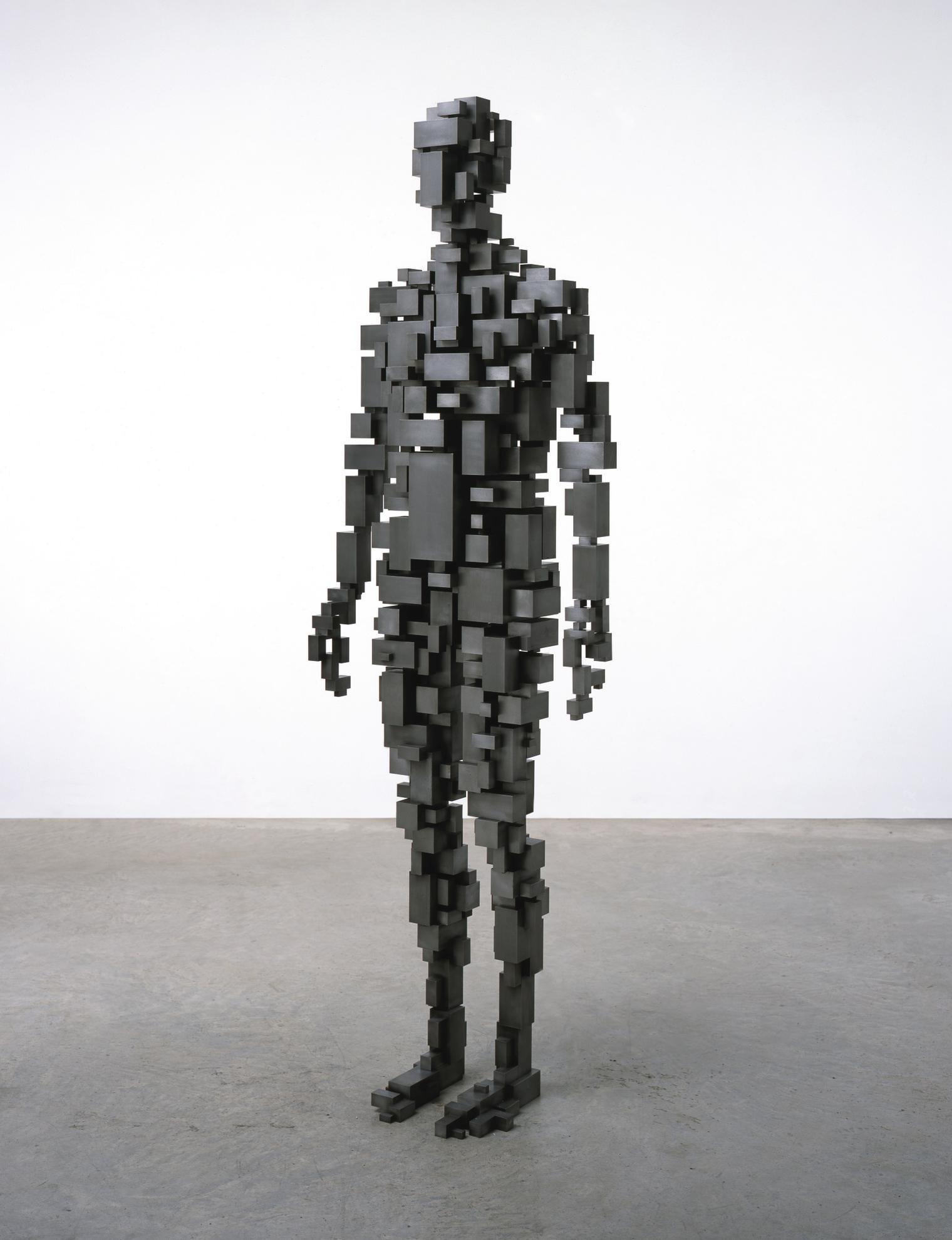 Antony Gormley-Sublimate VI-2006