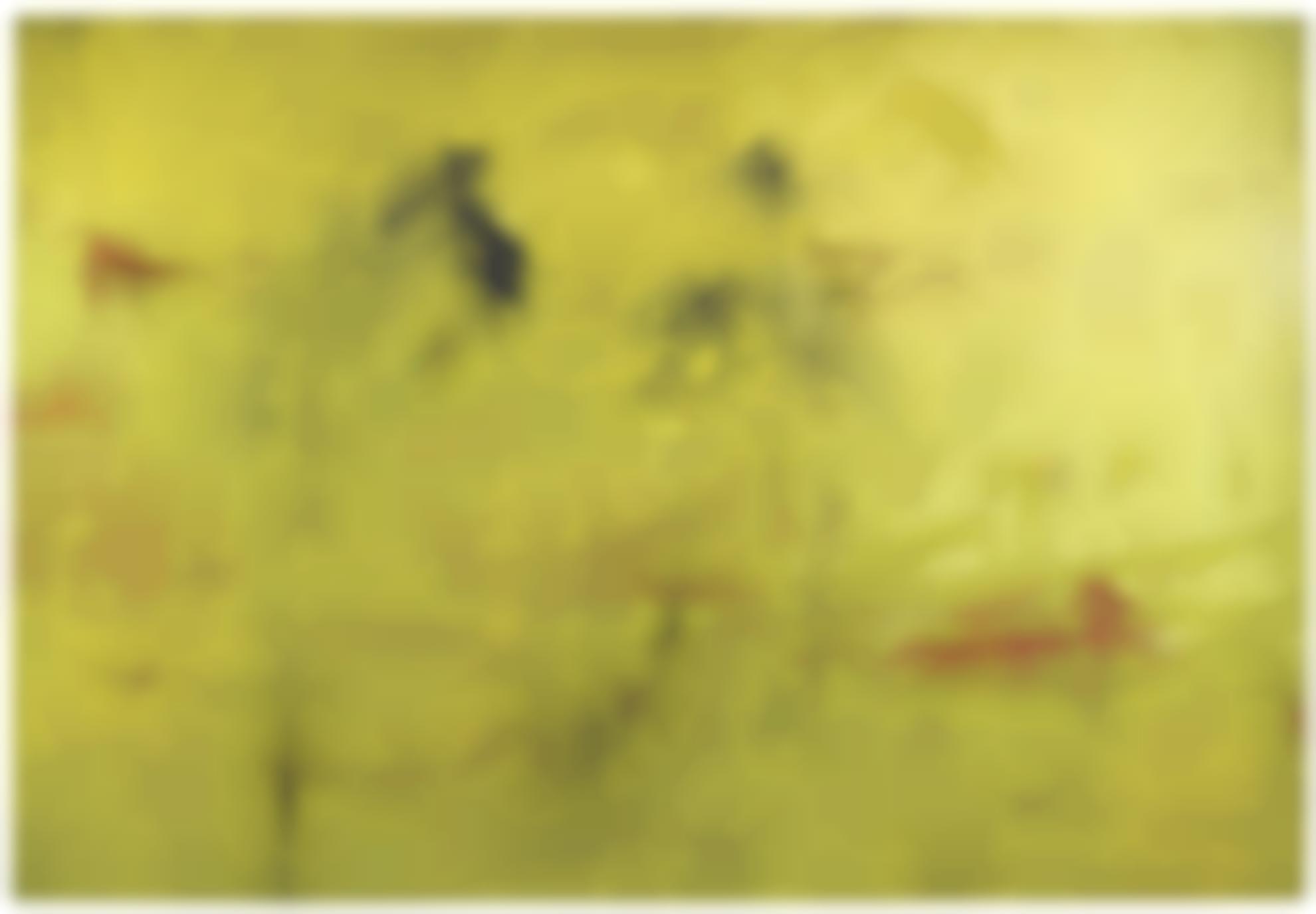 Hubert Scheibl-Yellow - Run-2010