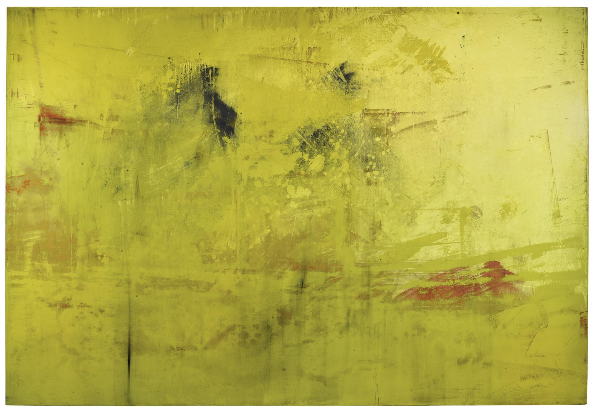 Hubert Scheibl-Yellow - Run-2010
