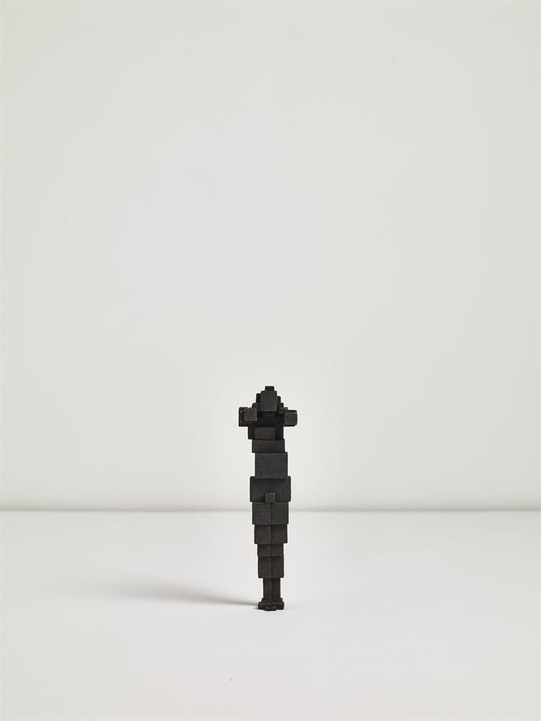 Antony Gormley-Cumulate Model V-2011
