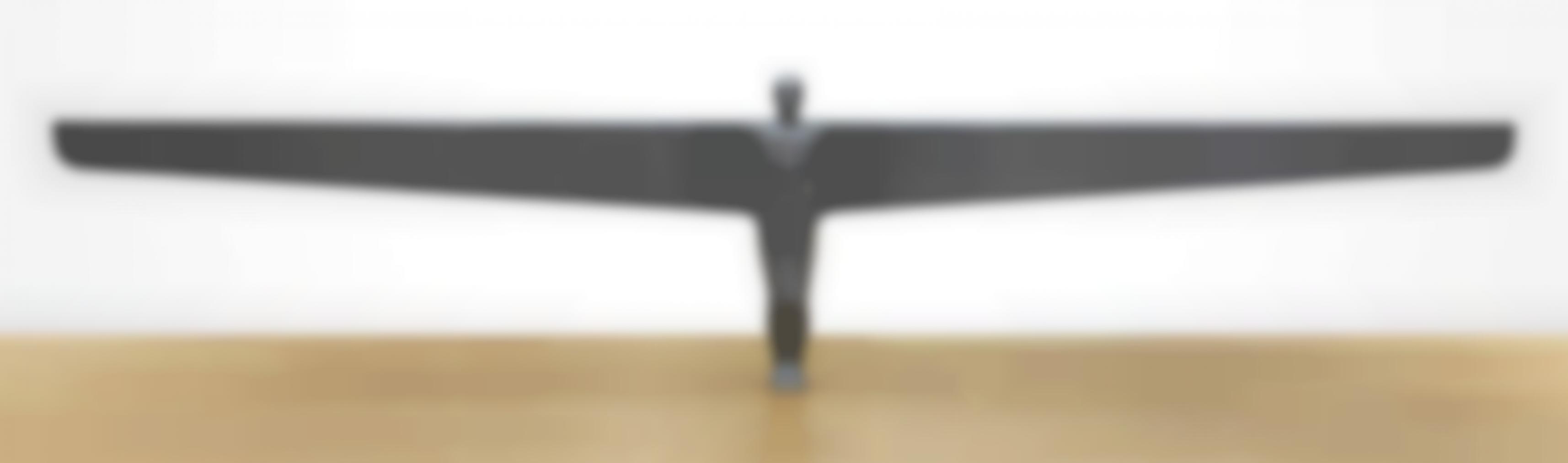 Antony Gormley-A Case For An Angel I-1989