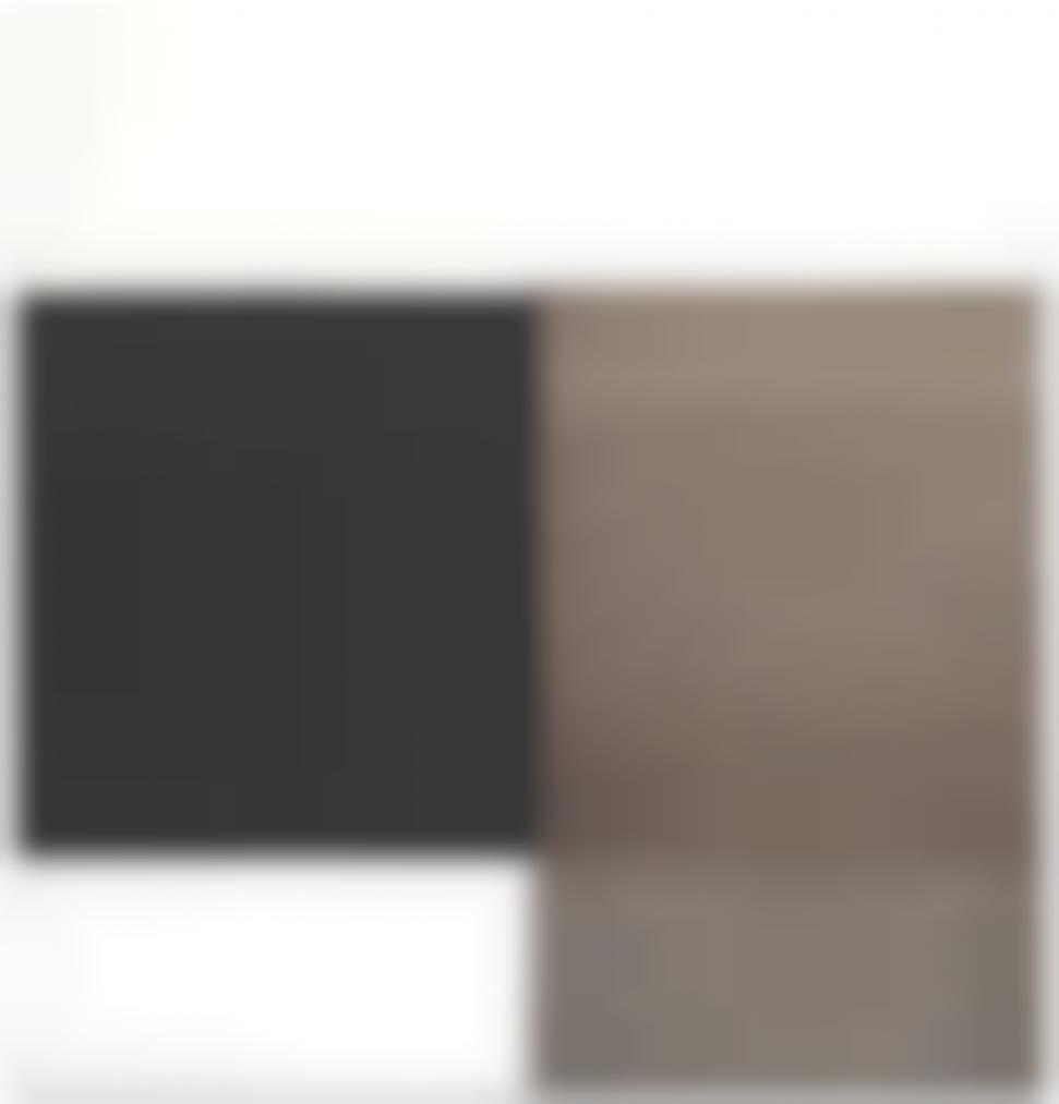 Callum Innes-Exposed Painting Charcoal Black / Asphalt-2004
