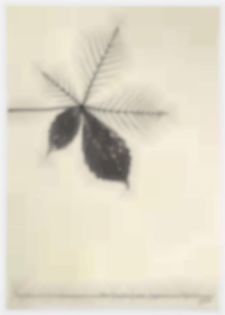 Vincenzo Agnetti-Progetto Panteistico (All-Encompassing Project)-1972
