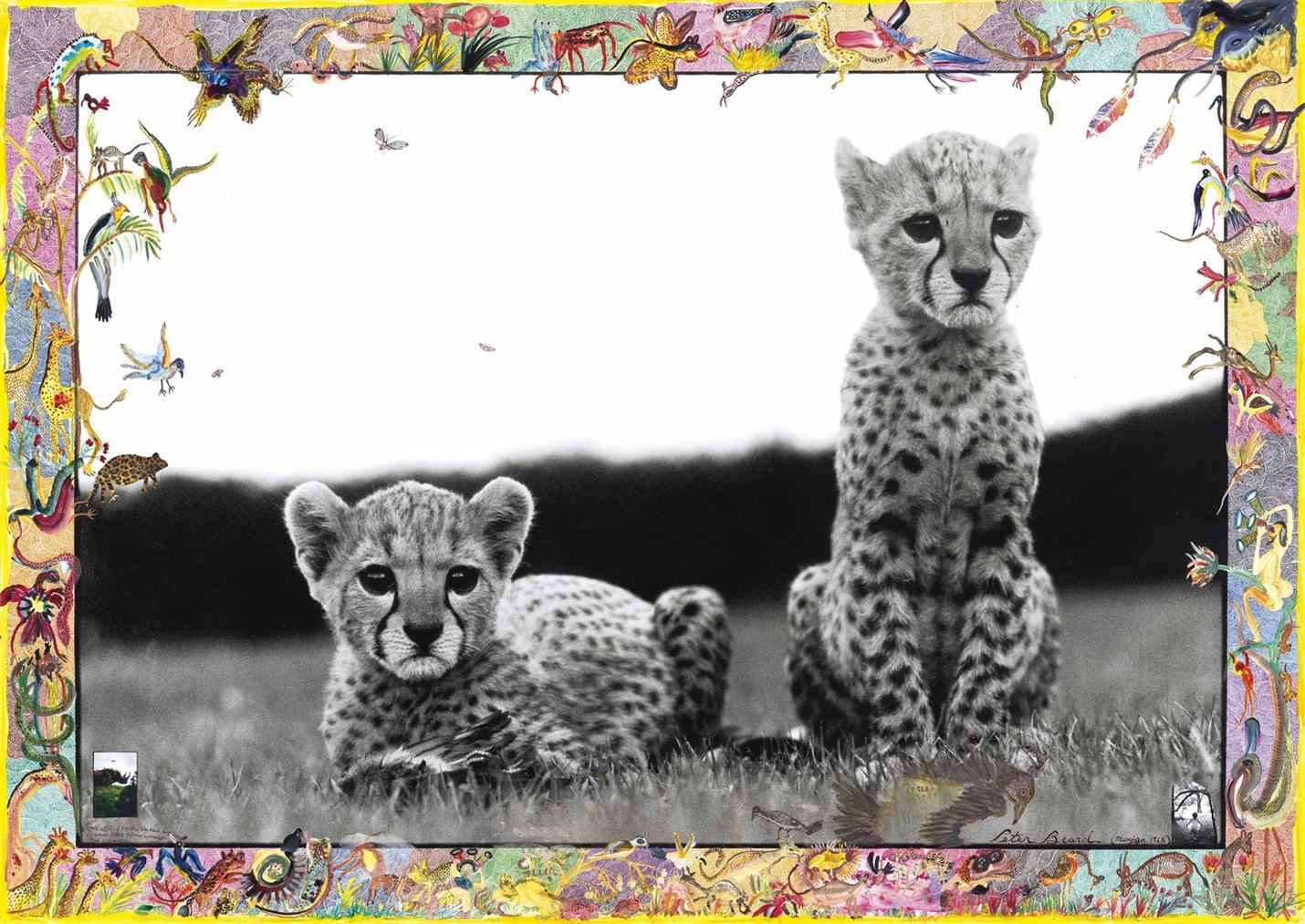 Peter Beard-Orphaned Cheetah Cubs, Mweiga, Near Nyeri, Kenya, March 1968-1968