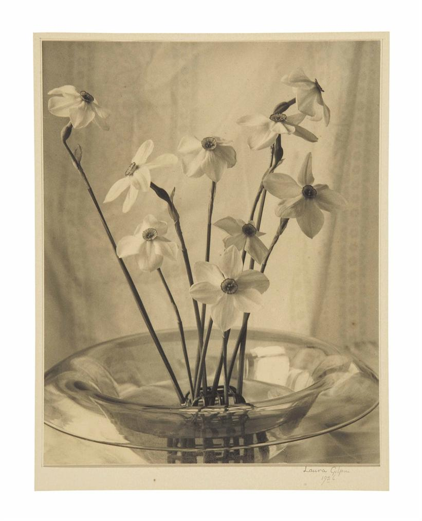 Laura Gilpin-Narcissus-1926