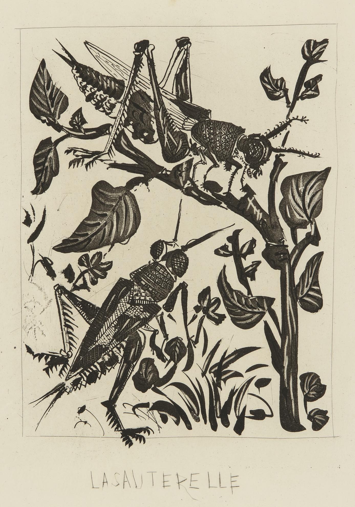 Pablo Picasso-La Sauterelle: Four States (B. 358; Ba. 605)-1936