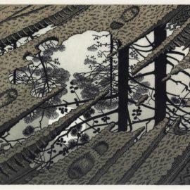 Maurits Cornelis Escher-Puddle-1952