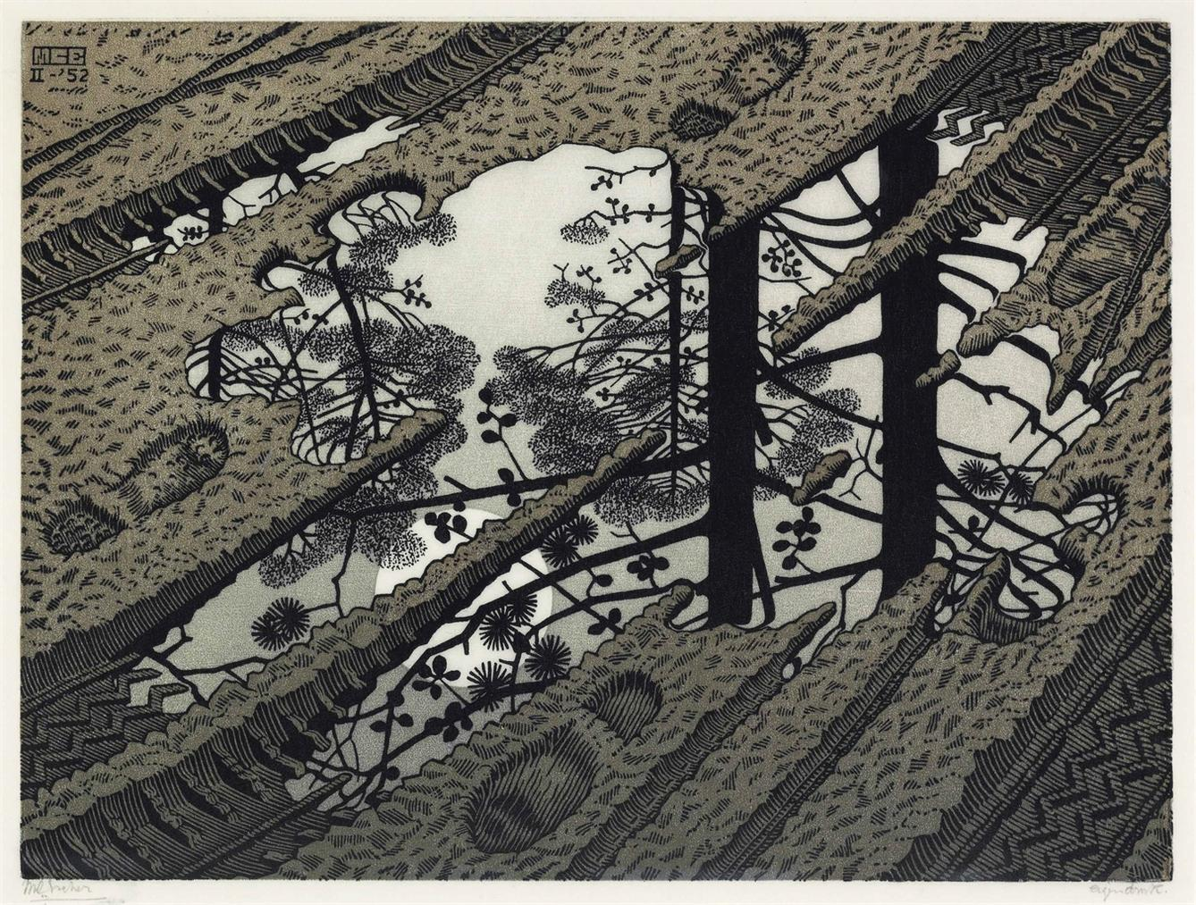 Maurits Cornelis Escher-Puddle-1952