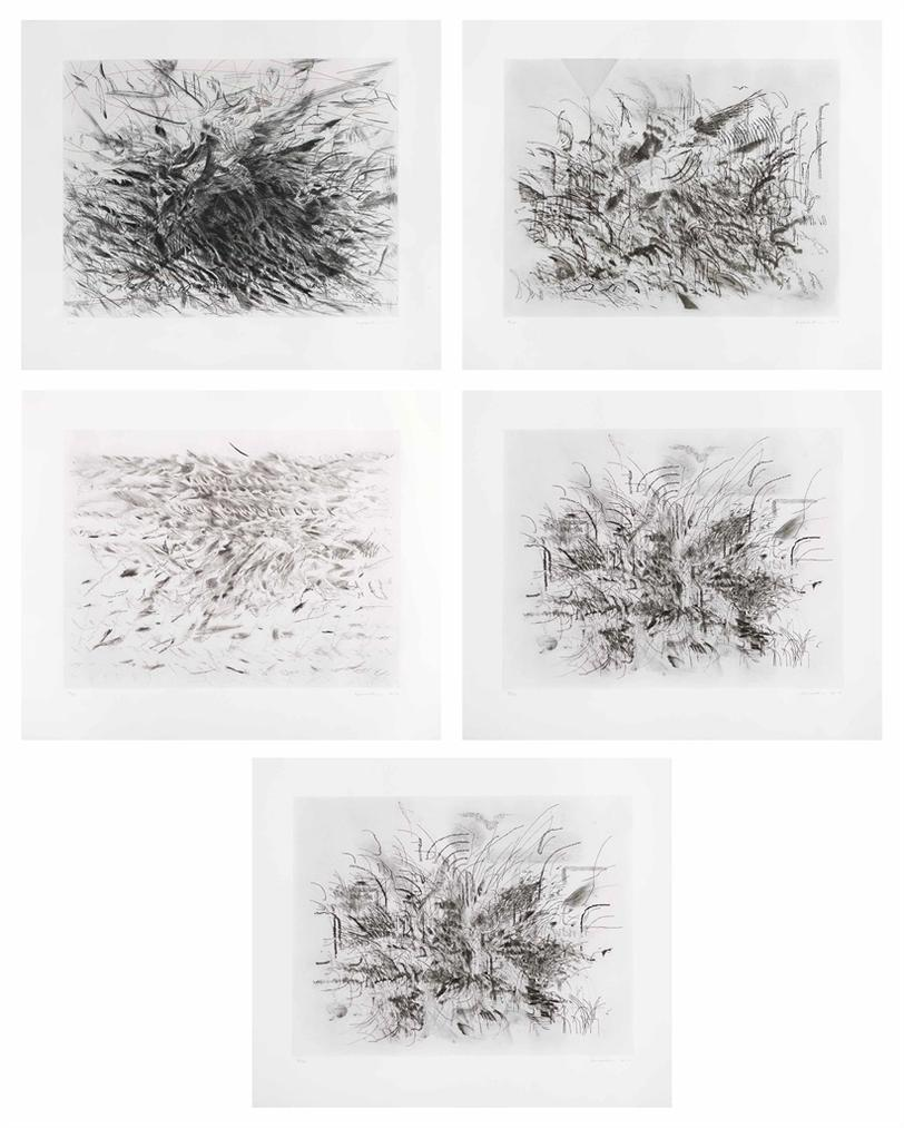 Julie Mehretu-Algorithms, Apparitions, And Translations-2013