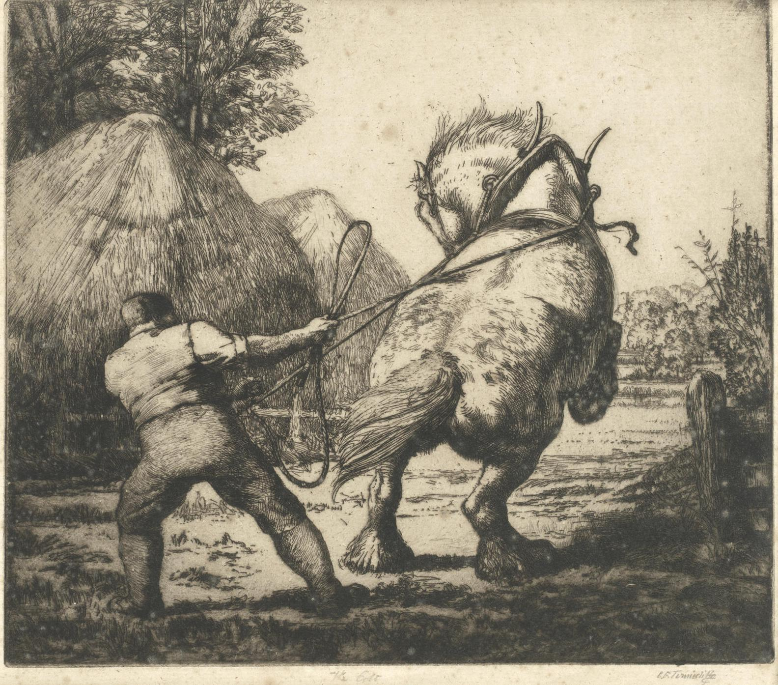 Charles Frederick Tunnicliffe-Four Etchings Of Horses-