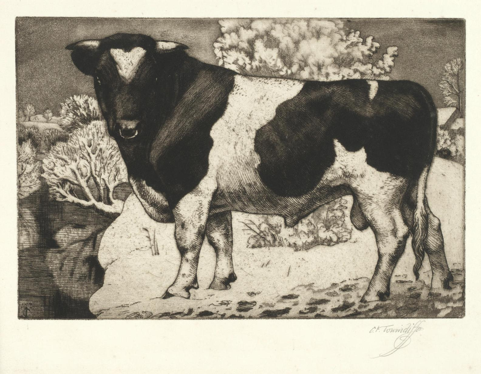 Charles Frederick Tunnicliffe-Five Etchings Of Cows And Bulls-