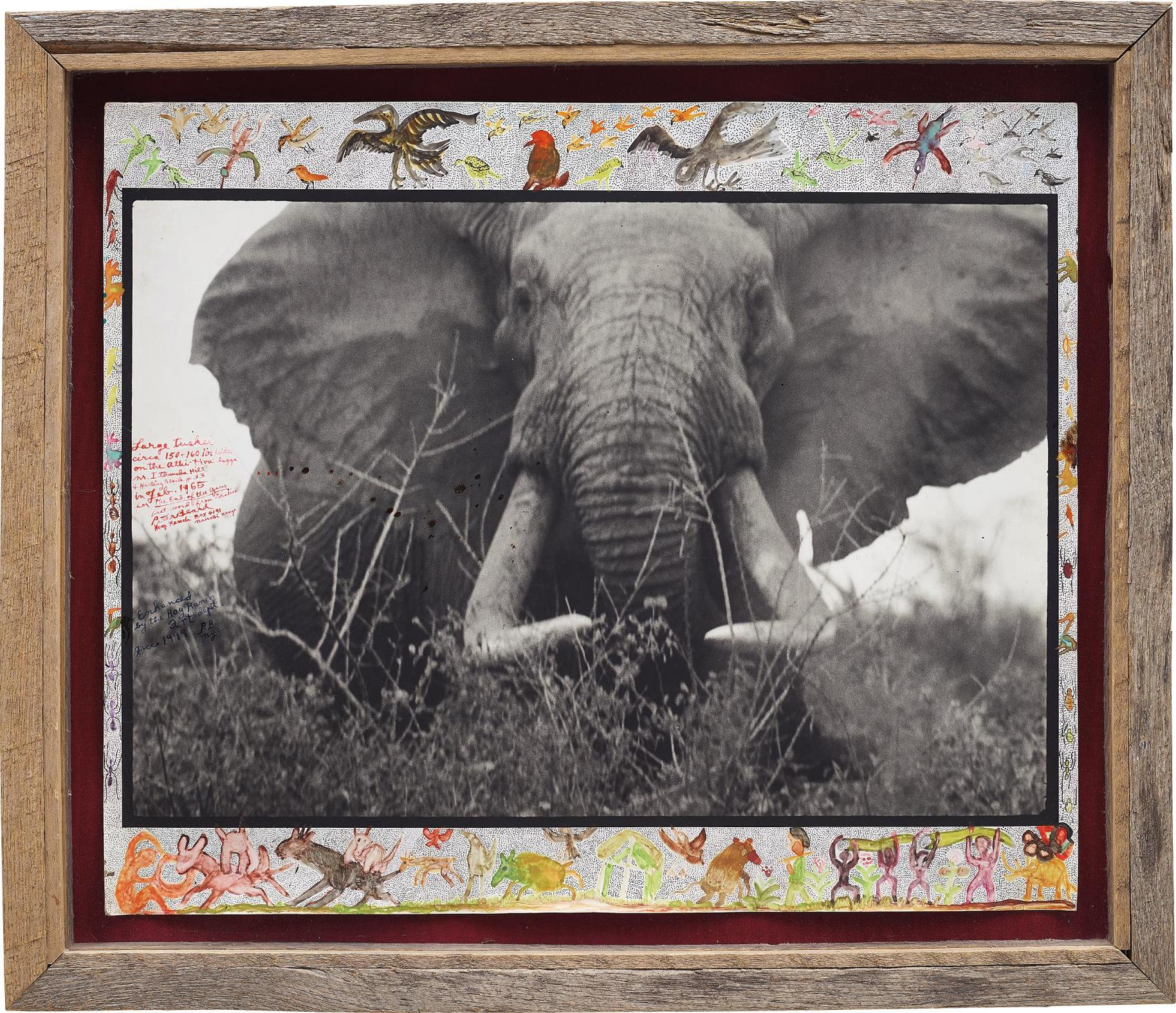 Peter Beard-Large Tusker (C. 150 Lbs Per Side), Tsavo North, Near Hunting Block 33/ Ithumber Hill On The Athi-Tiva Dry River, February-1965