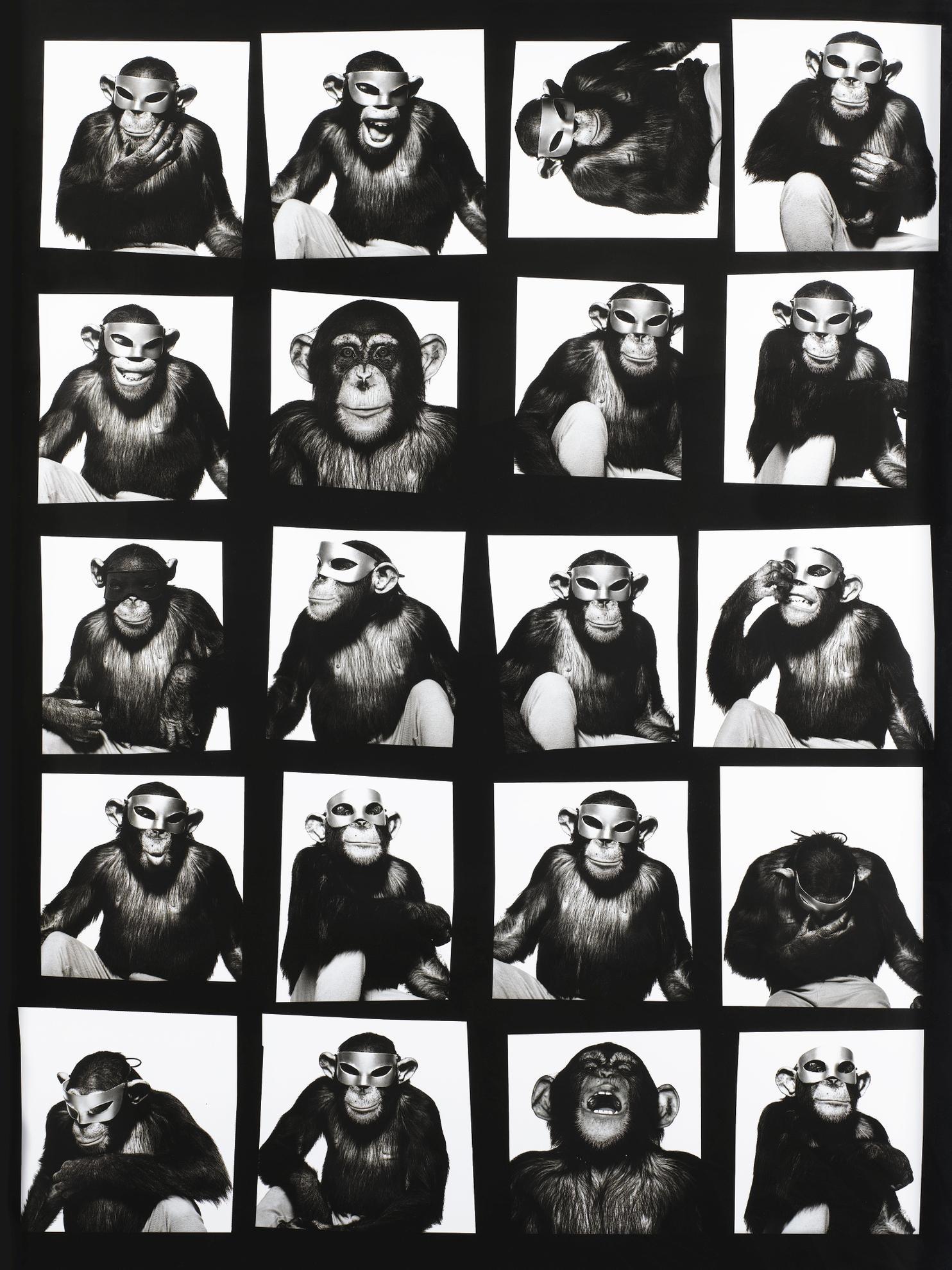 Albert Watson-Monkeys With Masks, New York-1994