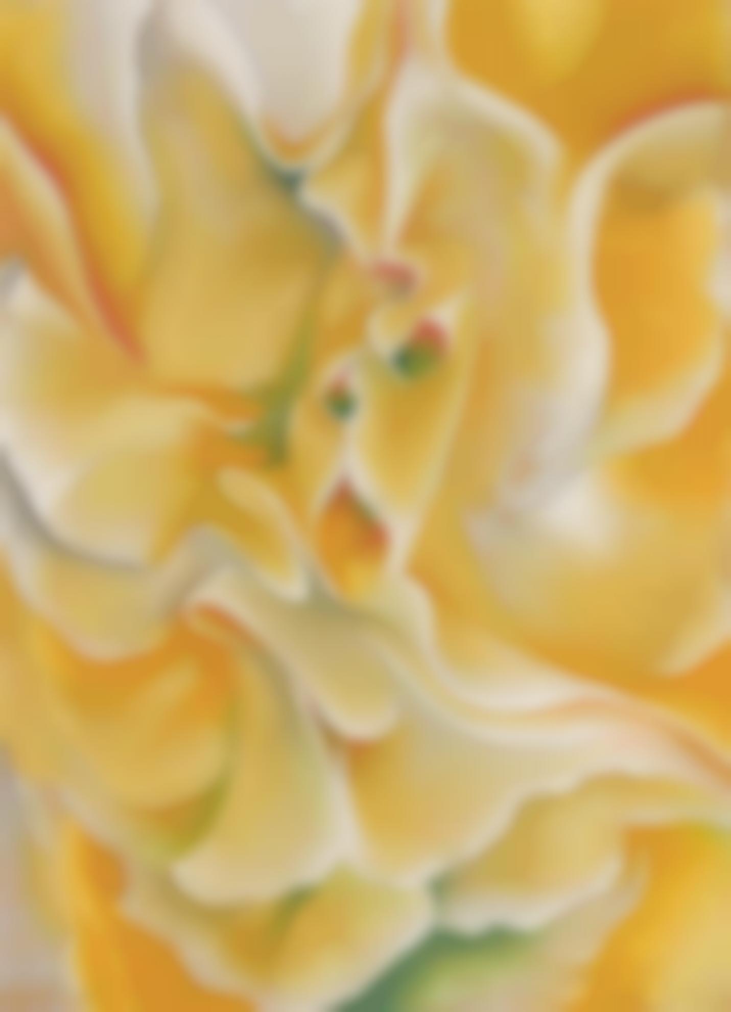 Georgia O'Keeffe-Yellow Sweet Peas-