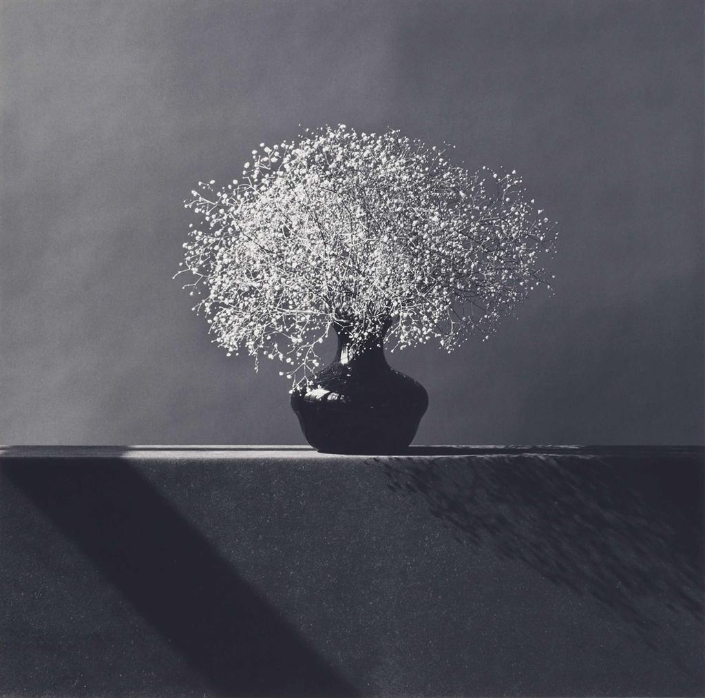 Robert Mapplethorpe-Babys Breath-1982
