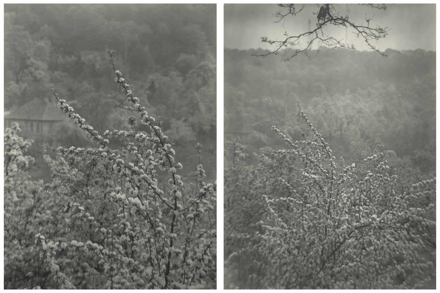 Josef Sudek-View Of Spring From Our Street-1973
