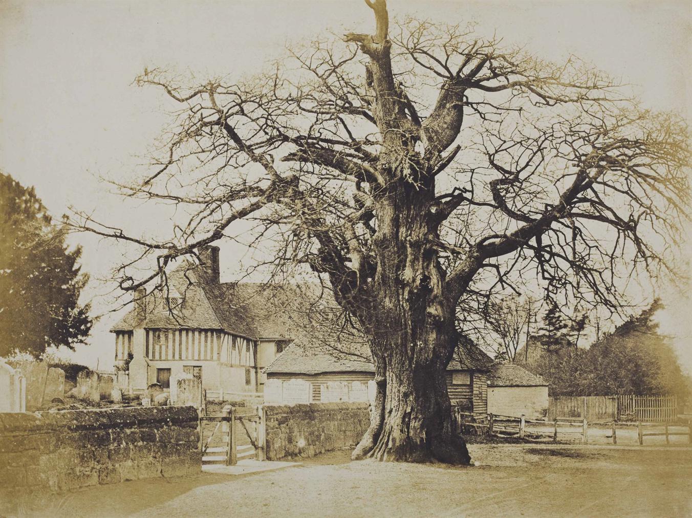 Benjamin Brecknell Turner-Church Oak, Hawkhurst-1854