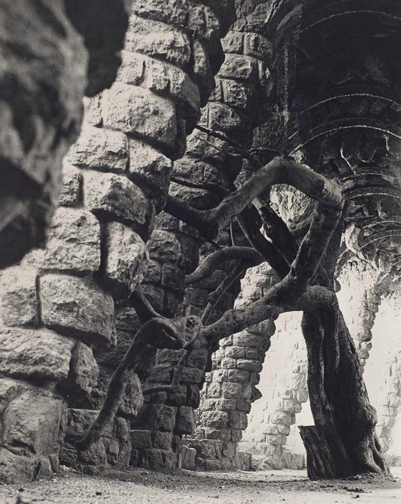 Man Ray-La Super Nevrose Mammouth-1933