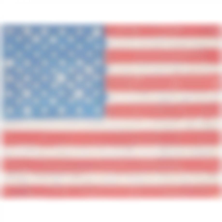 SnikTwo-American Flag-2012