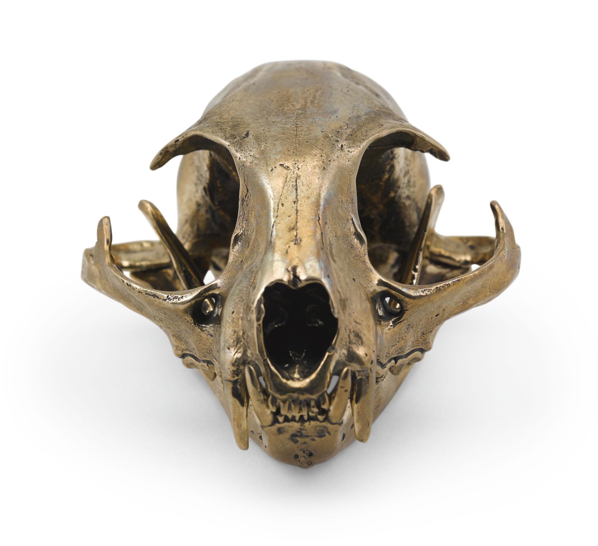 Sherrie Levine-Bobcat Skull-2010