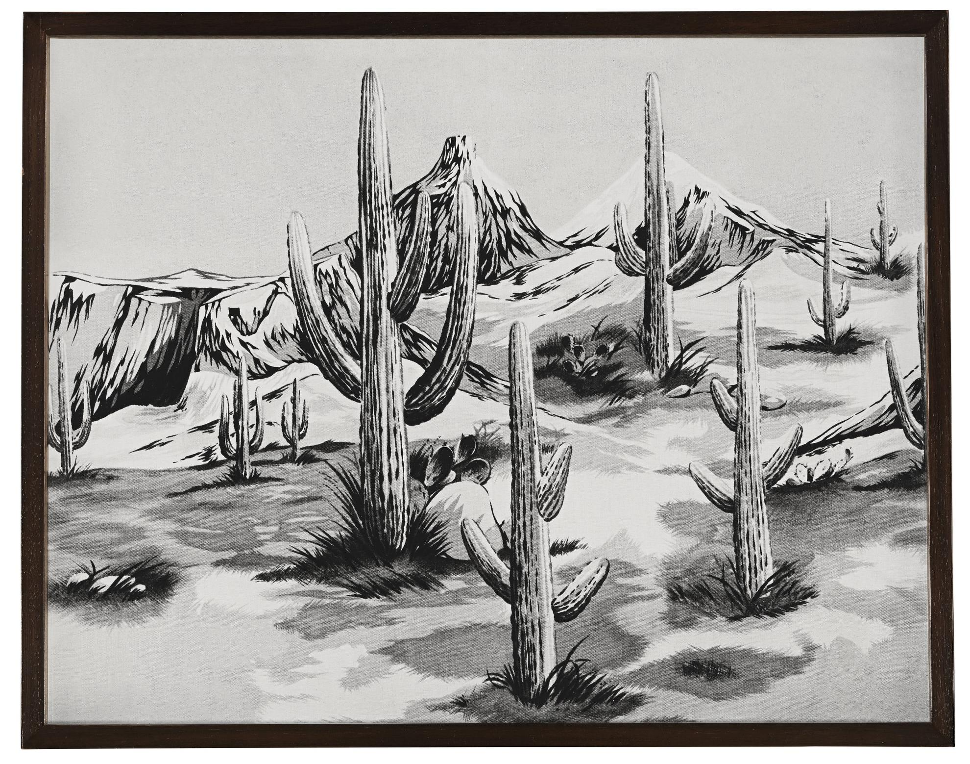 Elad Lassry-Desert-2010