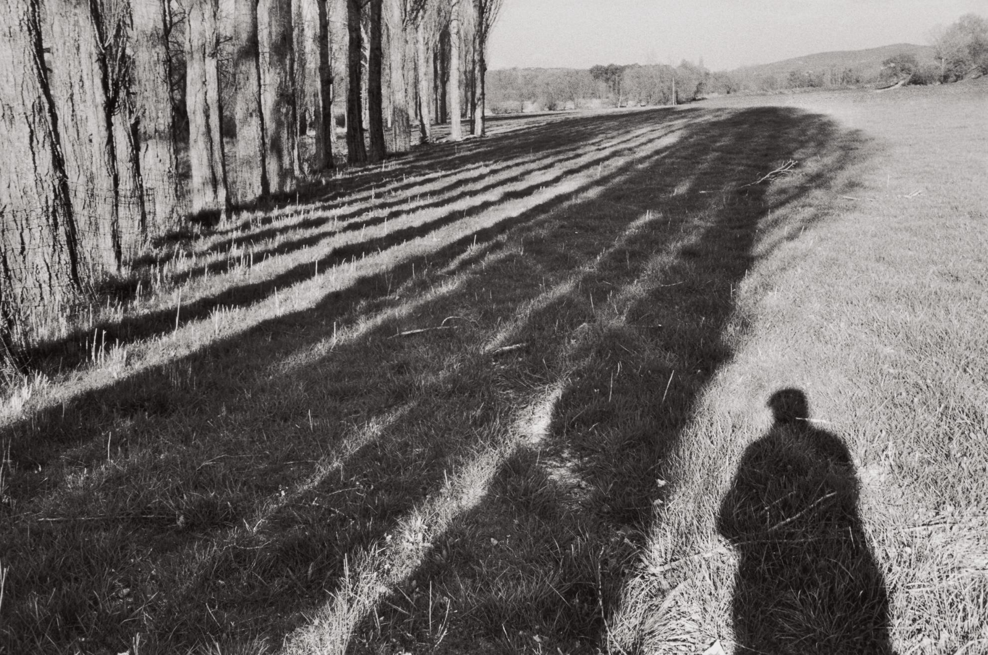 Henri Cartier-Bresson-Near Cereste, Alpes-De-Haute-Provence, France (Self-Portrait)-1999