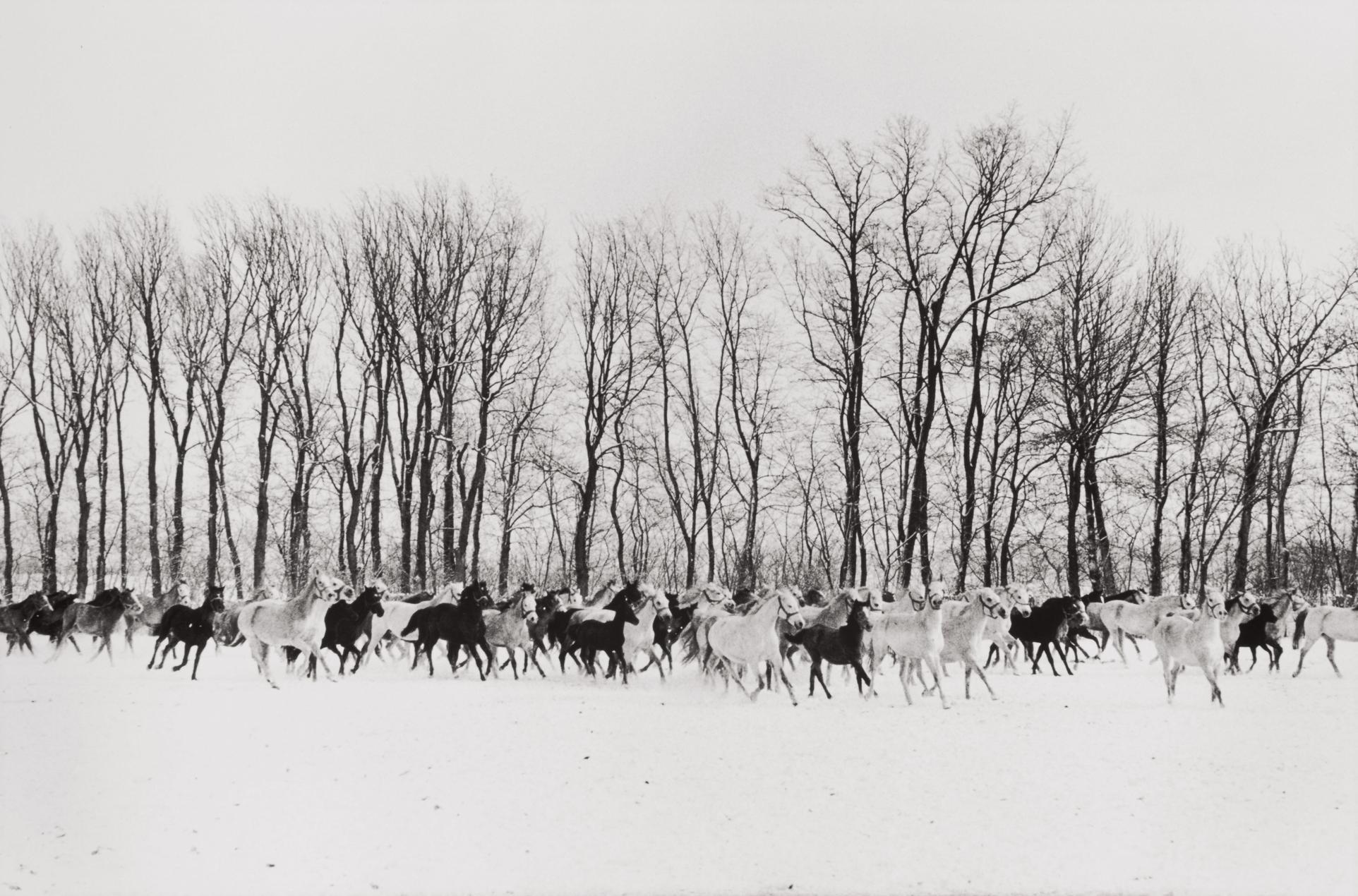 Henri Cartier-Bresson-Gyor, Hungary-1964