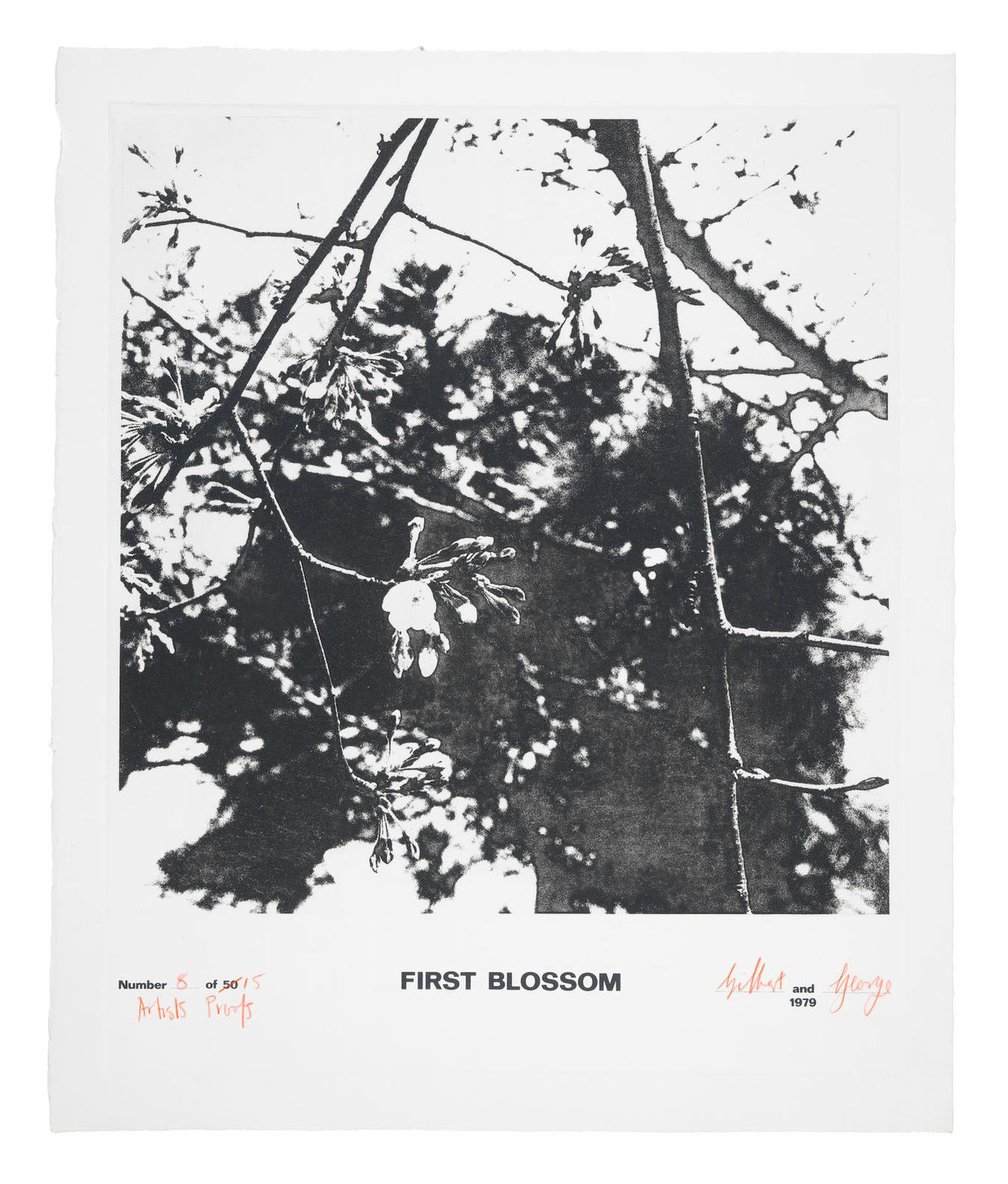 Gilbert and George-First Blossom-1979