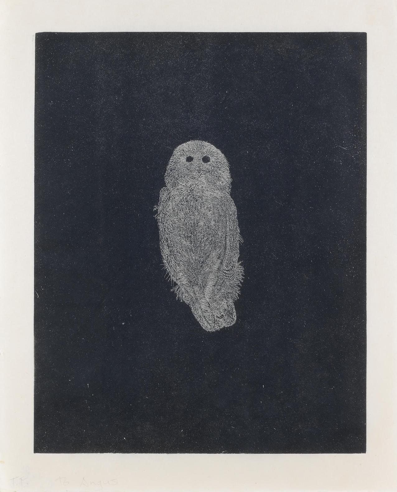 Kiki Smith-Owls 2-1998