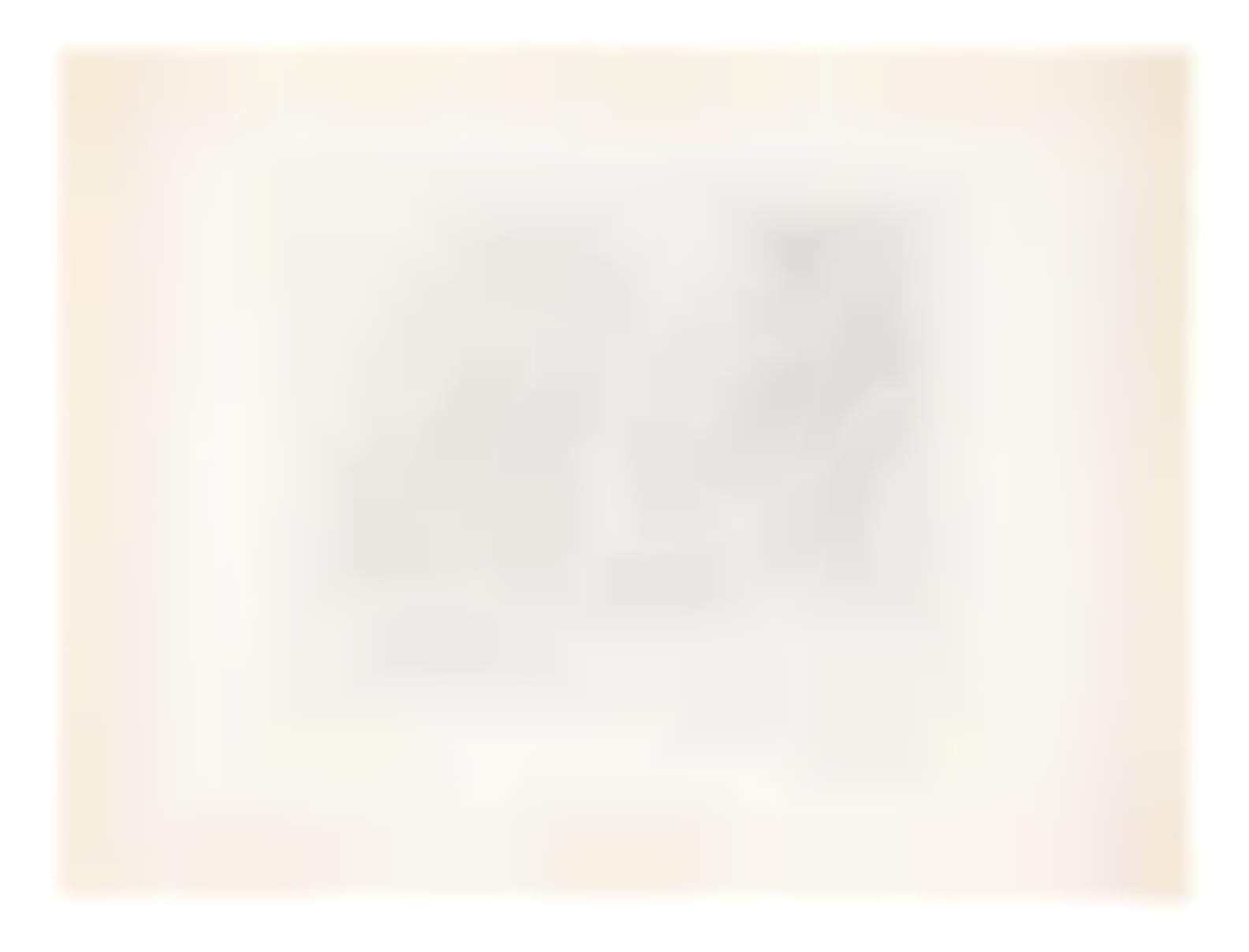 Henri Matisse-Nu Au Collier Et Aux Cheveux Longs-1920