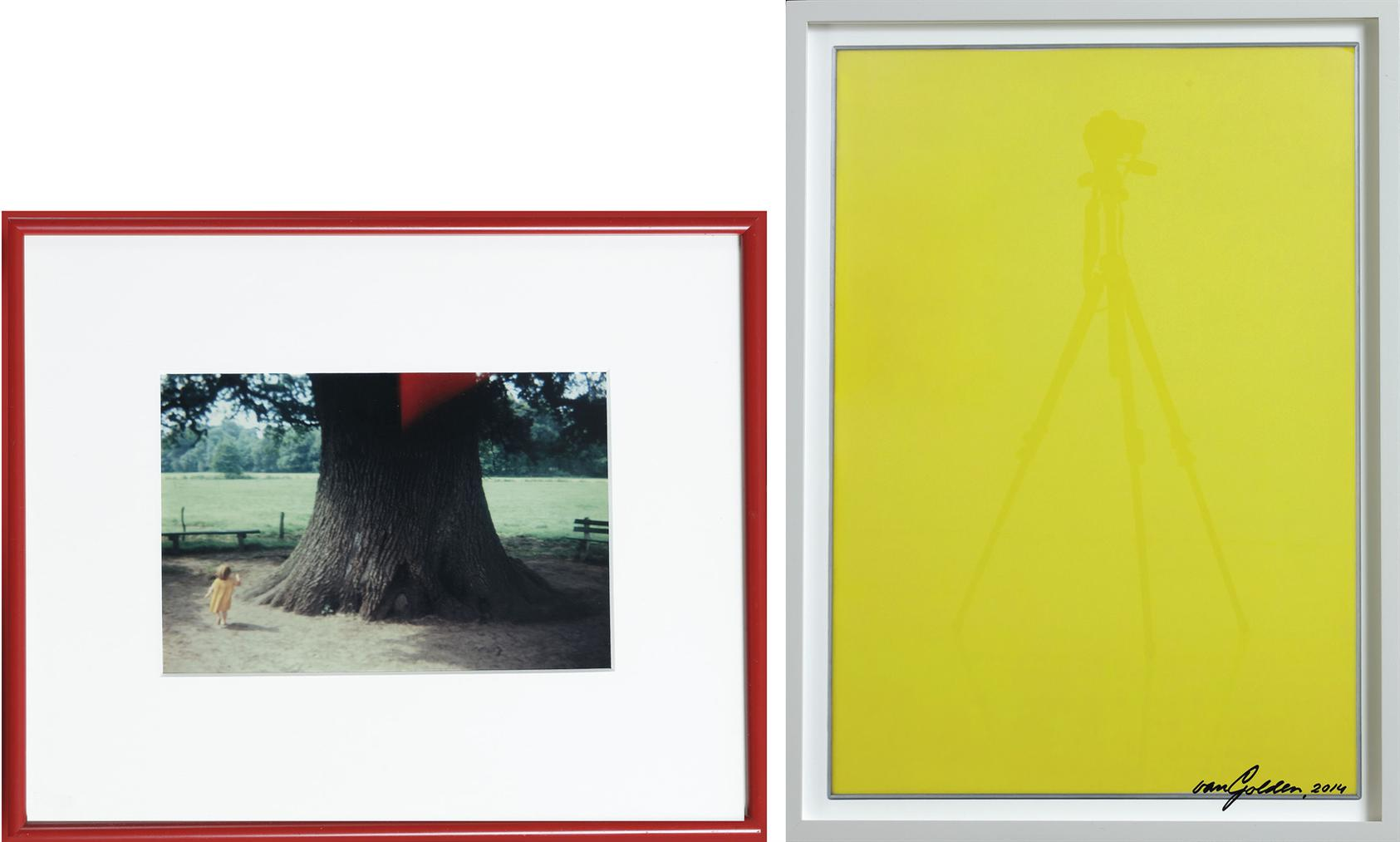 Daan van Golden-(I) Diana, Laren; (II) Gele Reflectie (Yellow Reflection)-2014