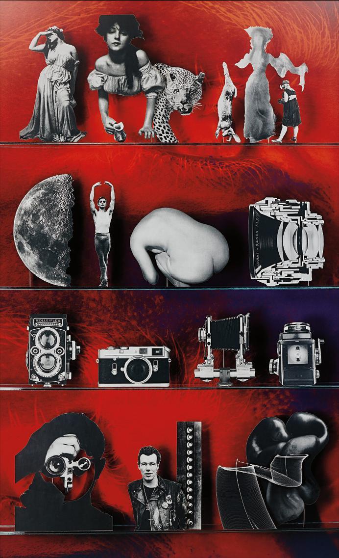 Matt Lipps - Camera-2013