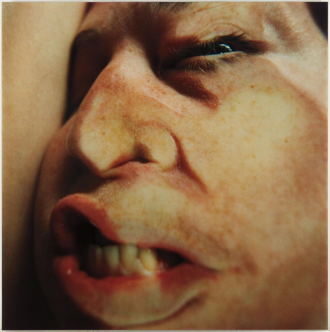 Glen Luchford And Jenny Saville - Closed Contact #16-1996