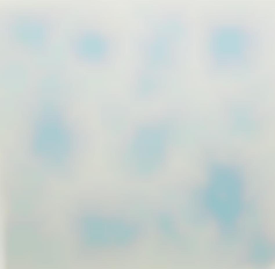 Tara Donovan-Untitled (Bubble Drawing)-2004