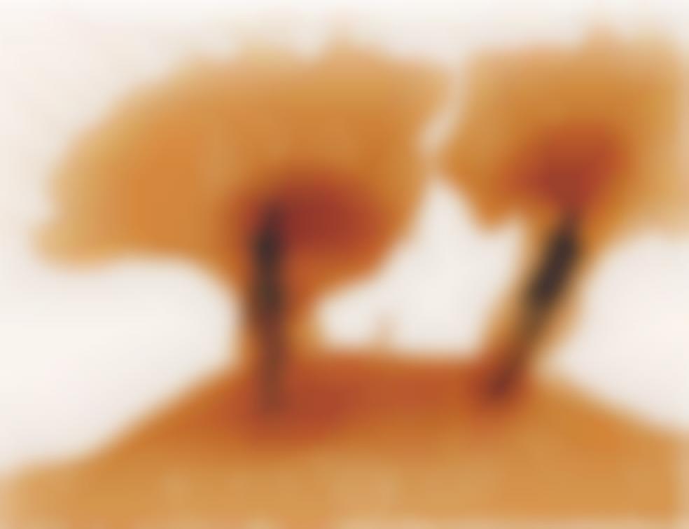 Antony Gormley-Zones Of Attachment-1997