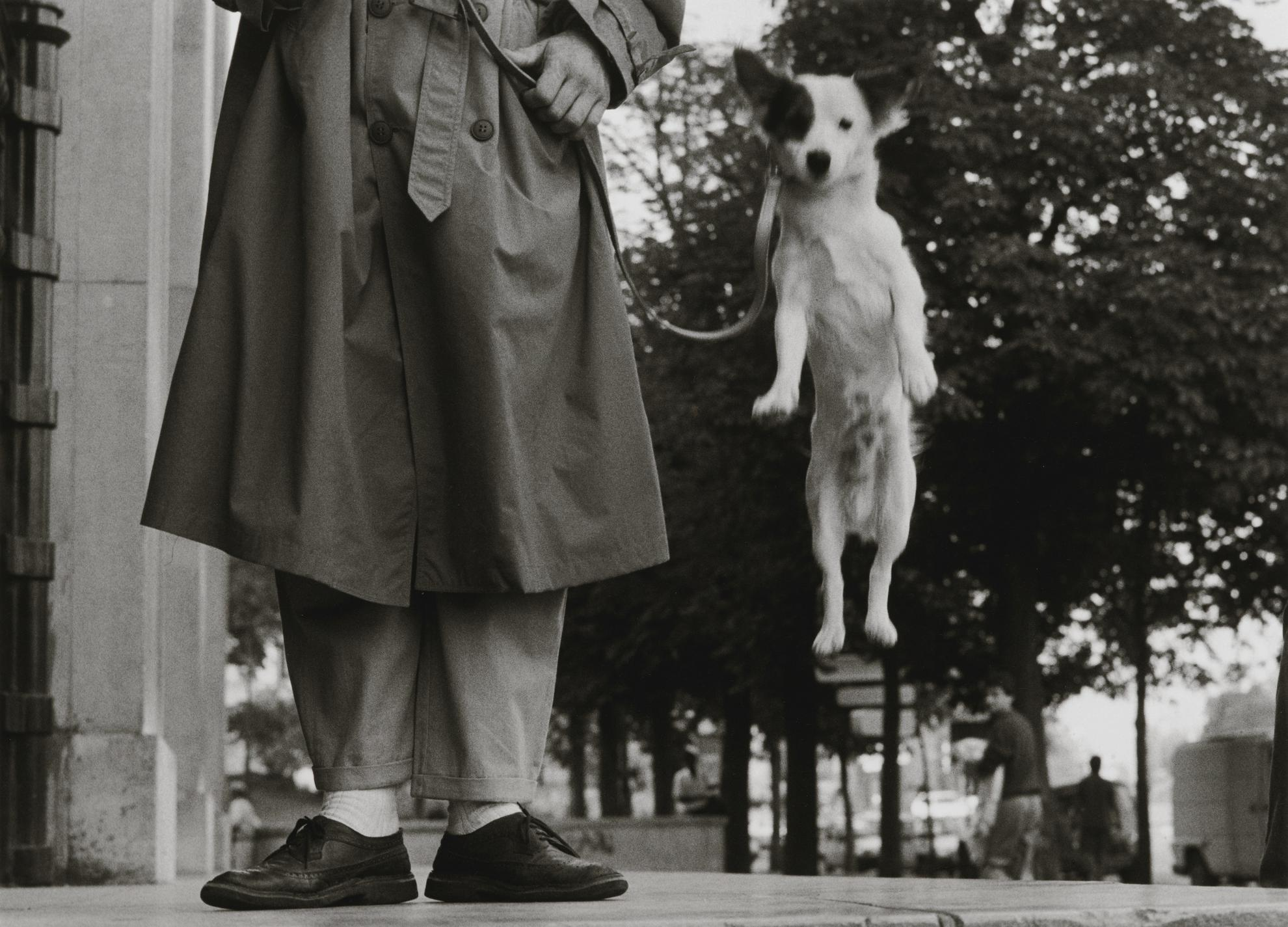 Elliott  Erwitt - Paris (Dog Jumping)-1989
