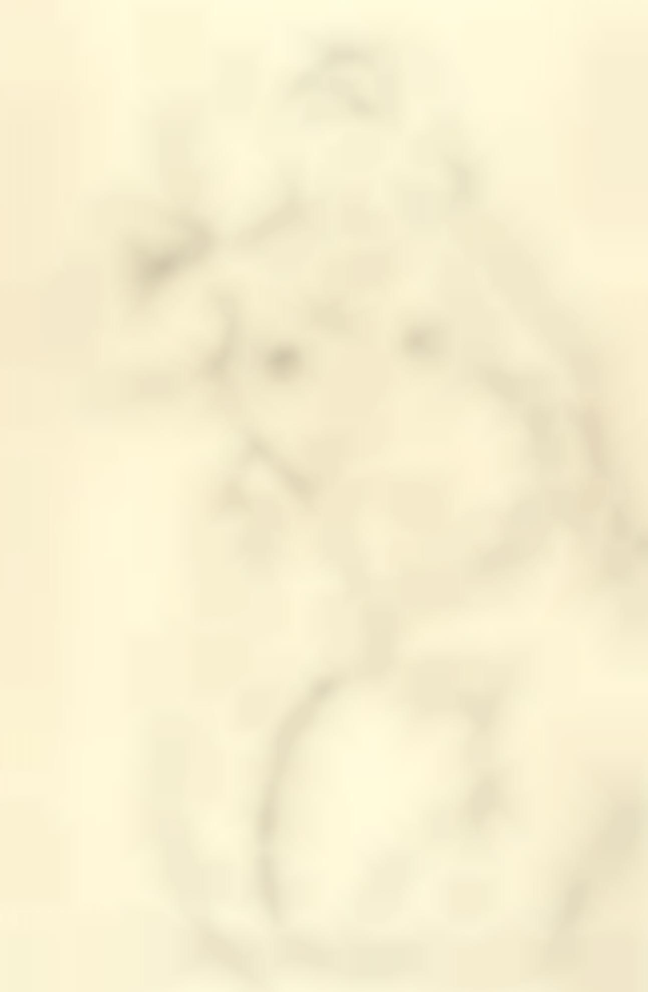 Gustav Klimt-Halbakt, Die Rechte Hand Auf Die Schulter Gelegt (Nude With Right Hand On Shoulder)-1915