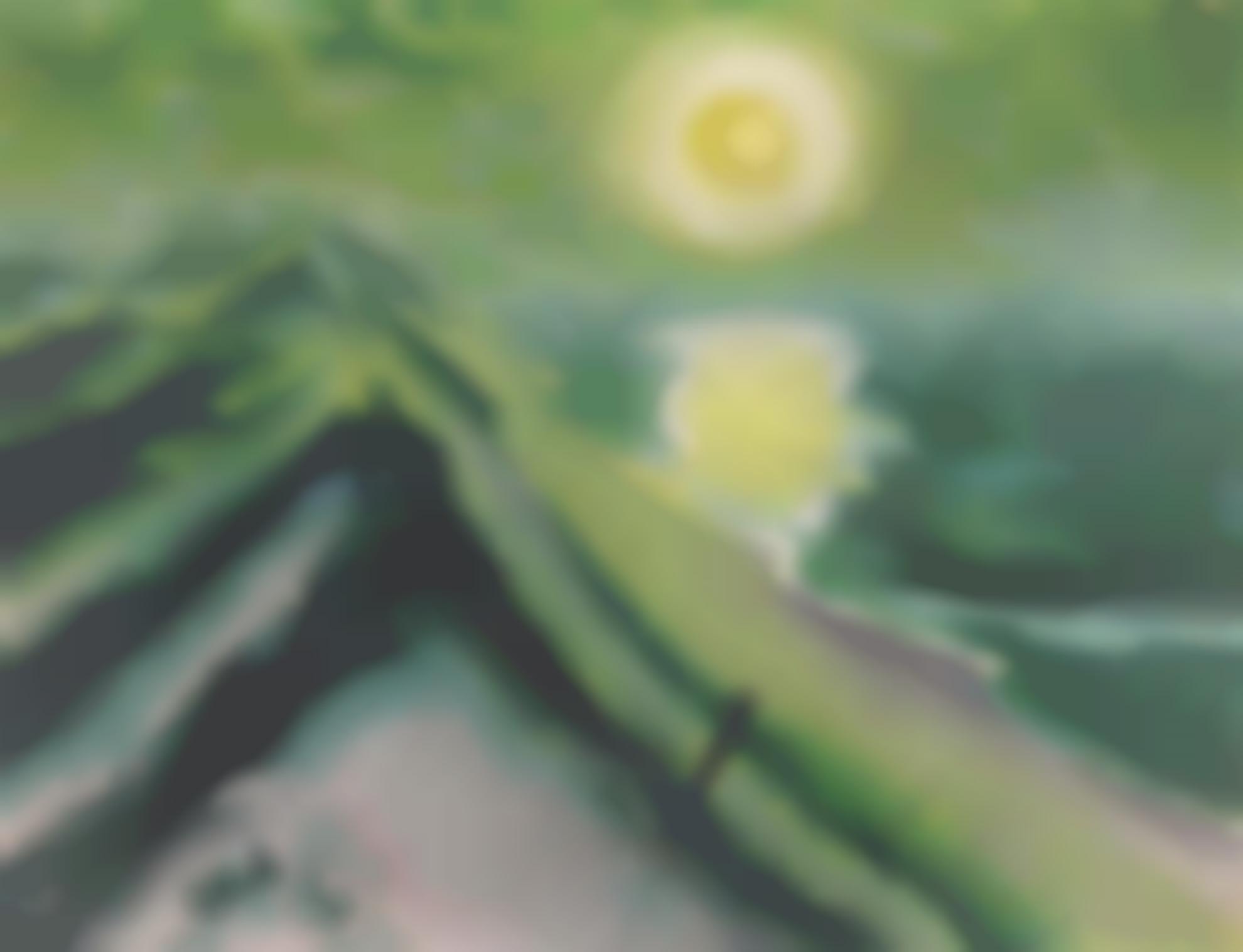 Max Pechstein-Seenebel (Sea Mist)-1922