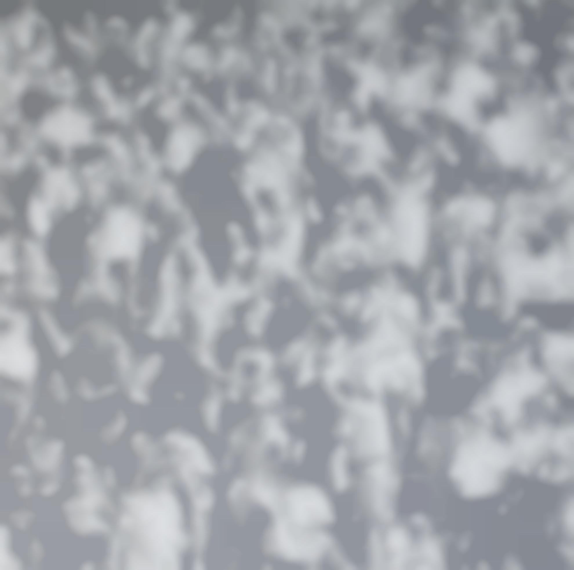 Wayne Gonzales-Cheering Crowd-2007