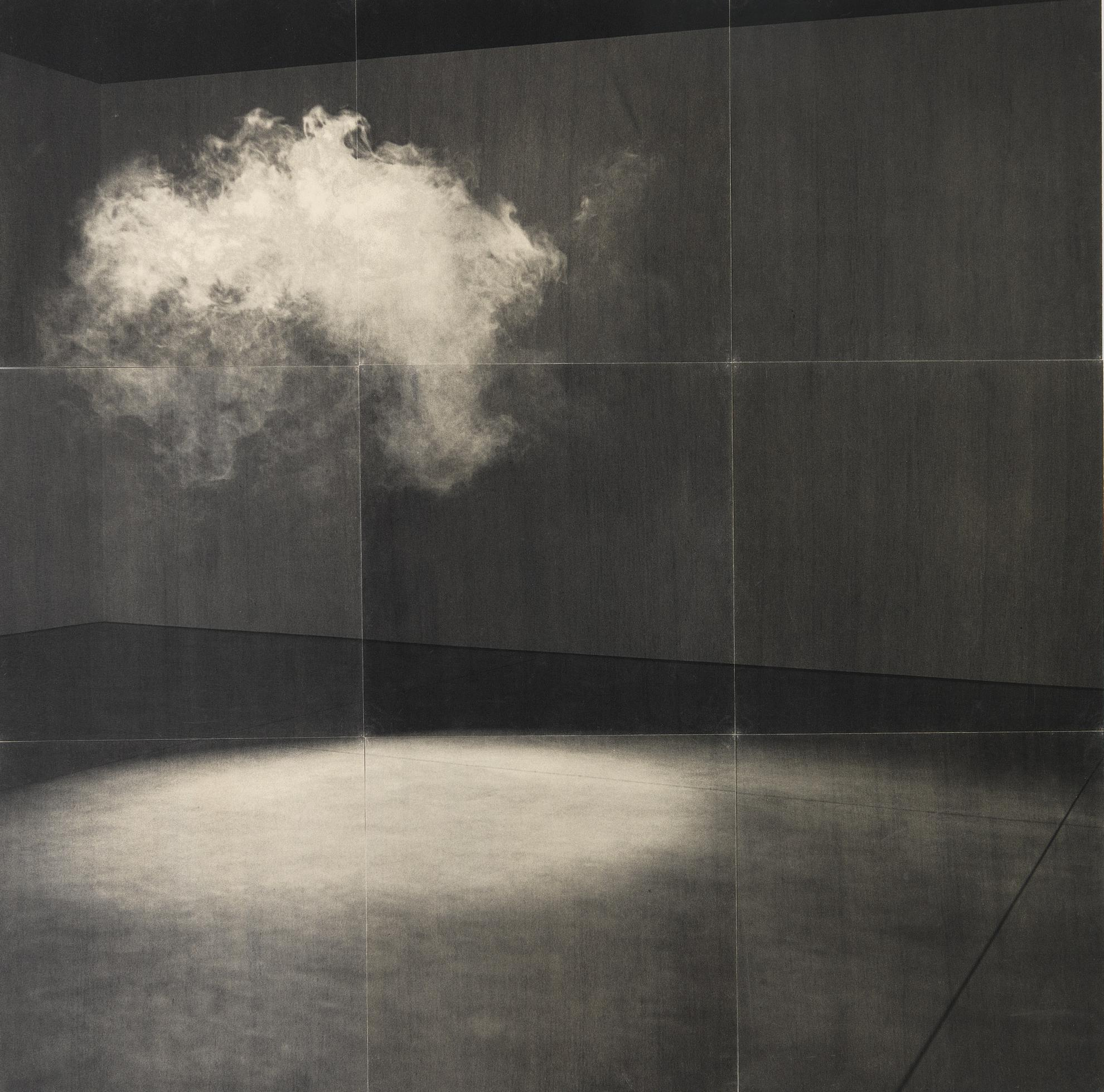 Lorna Simpson-Cloud-2005
