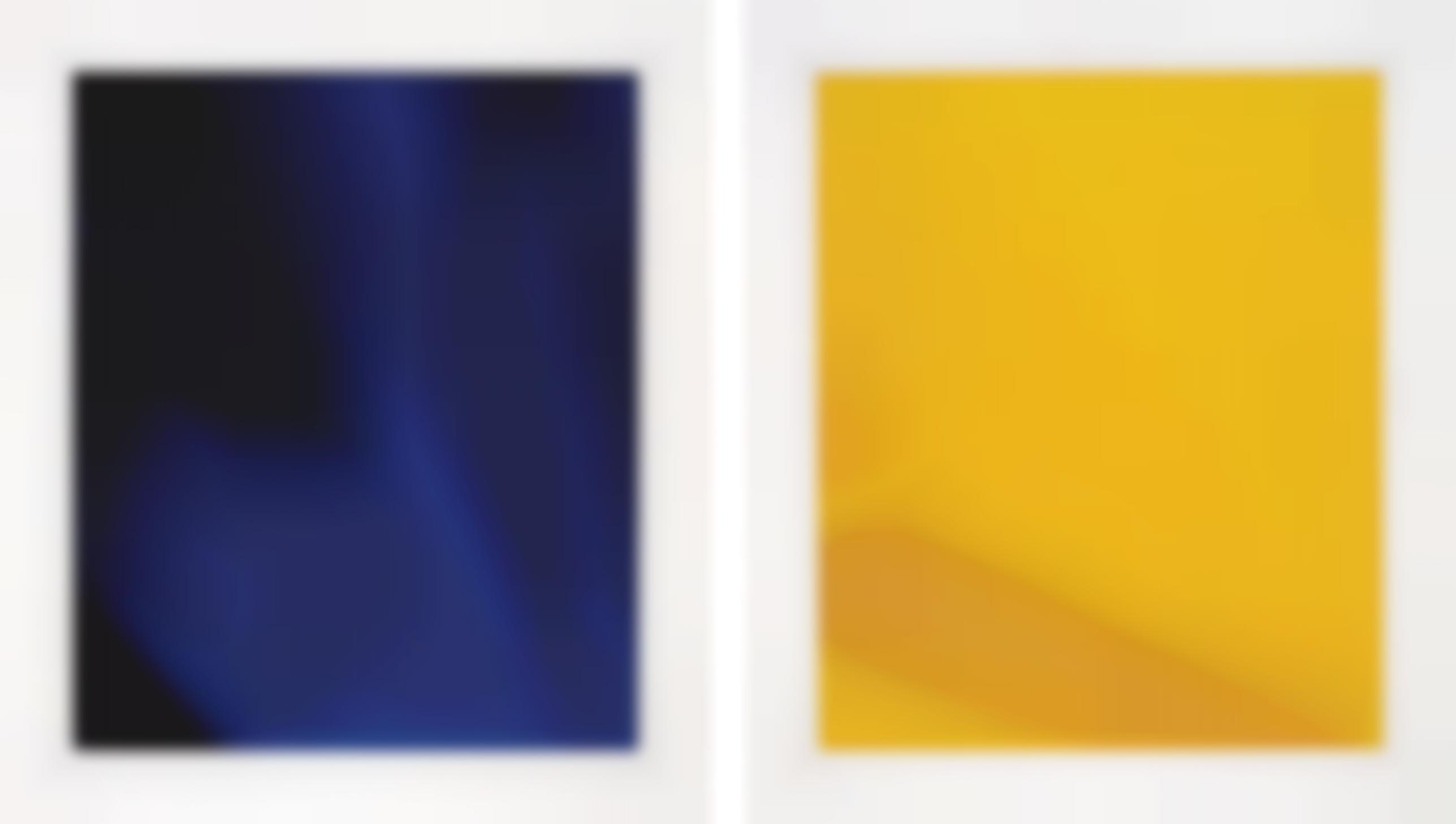 James Welling-Two Works: (i) Degrade Indv; (ii) Degrade Icyv-2003