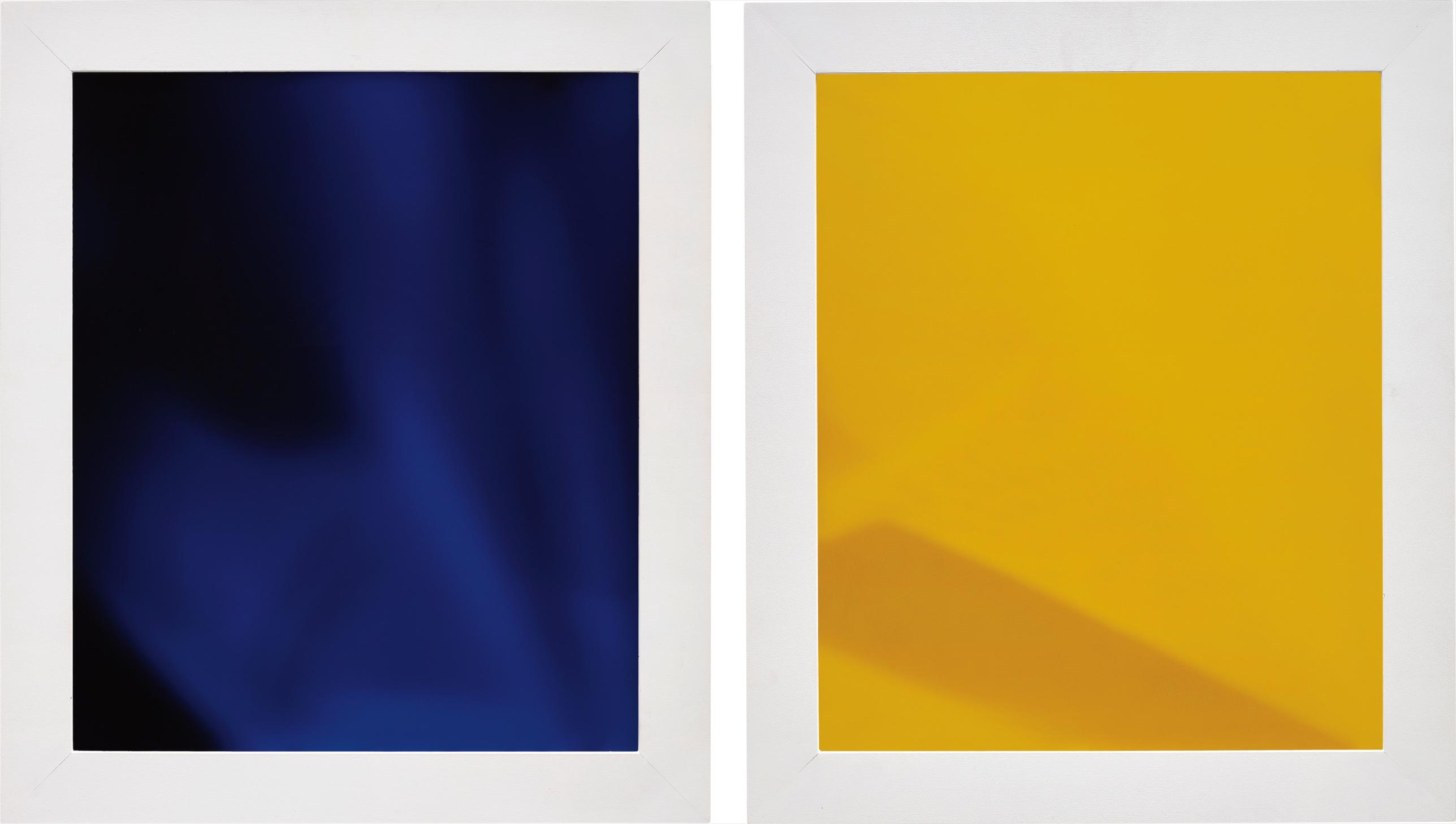 James Welling-Two Works: (i) Degrade Indv; (ii) Degrade Icyv-2003