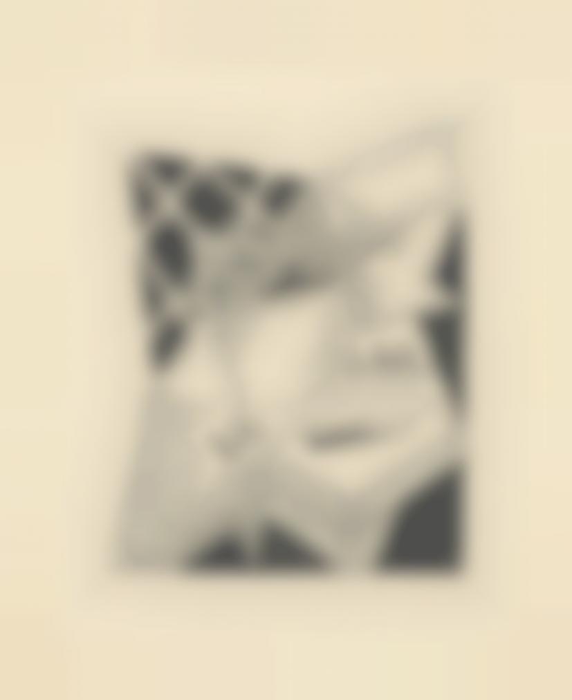 Juan Gris-Nature Morte Au Vase Et Au Journal (Denise)-1925