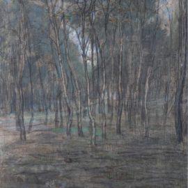 Piet Mondrian-Berkenbosje (Small Birch Forest)-1902