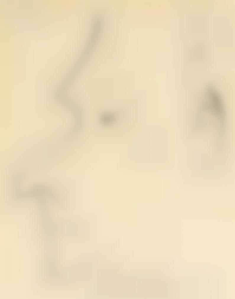 Pablo Picasso-Profil Dhomme (Recto); Deux Hommes De Profil (Verso)-