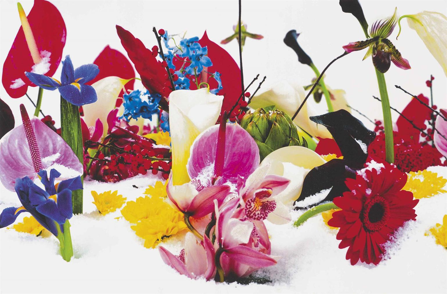 Marc Quinn-Winter Garden: Two Plates-2004